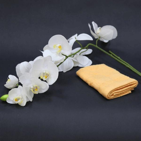 "Terry Towel ""Basic Line"" – face cloth"